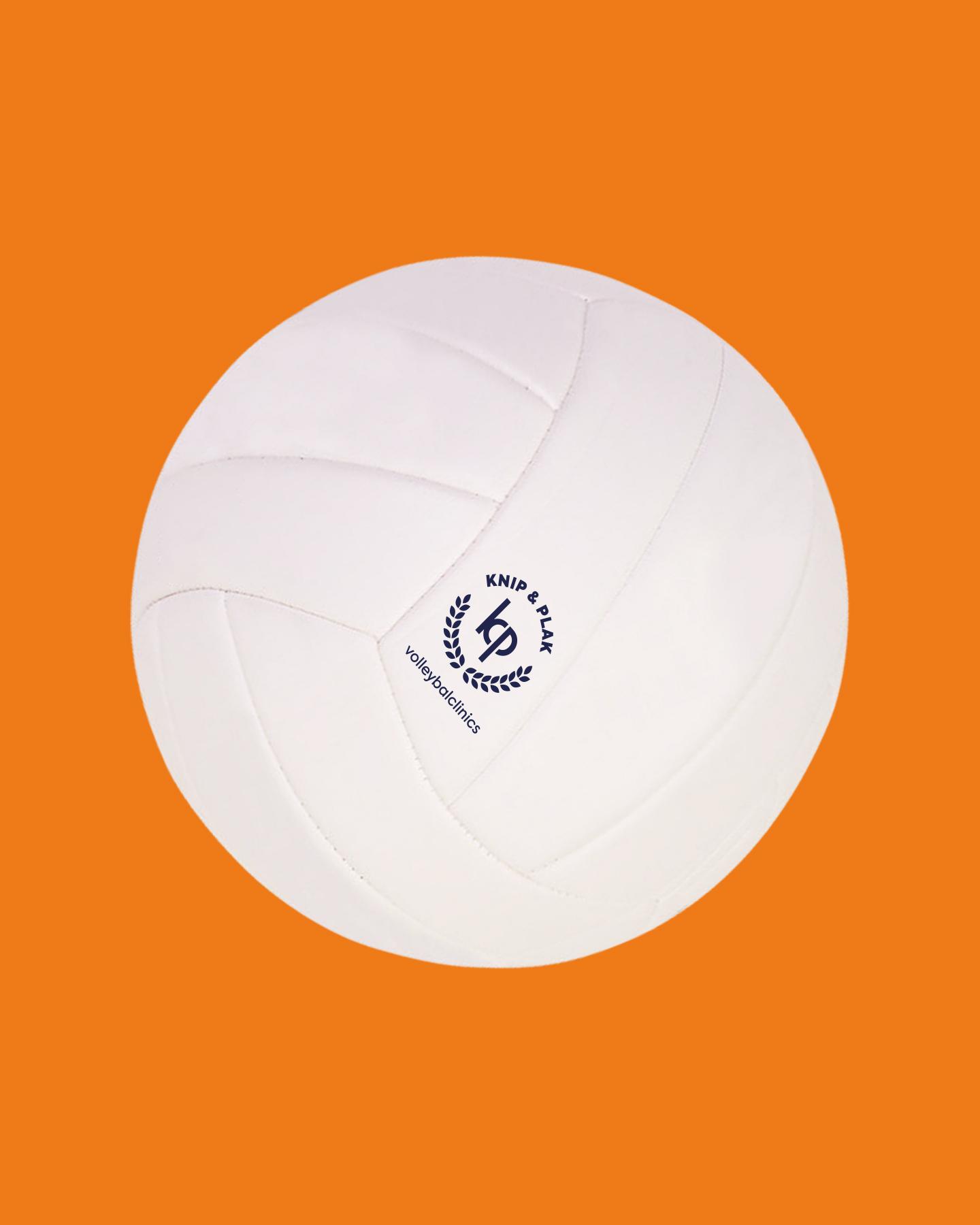 Volleybal en logo gemaakt voor Kirsten Knip en Celeste Plak (Knip & Plak) gemaakt door Sjoerd van Schagen